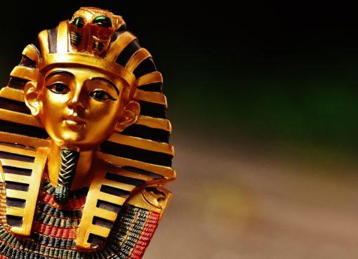 Conscience : découvrez qui vous êtes parmi ces 4 archétypes - https://missionamesoeur.fr/ - Stefano PRATT